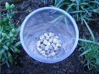 yoghurt pot with gravel in.