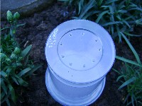 yoghurt pot with holes in the bottom