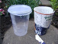 yoghurt pot sleeve removed